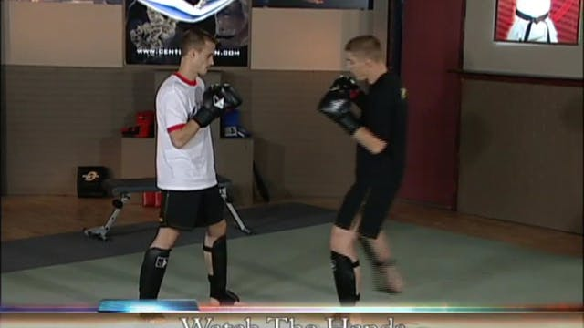 Duane Ludwig - Advanced Kicks