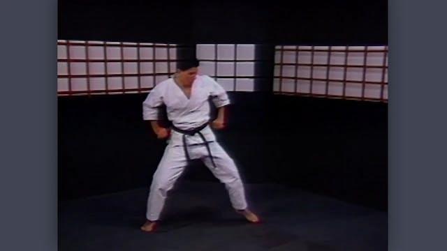 Nunchaku: Classic Fumio Demura Kobudo Video Warm-Ups