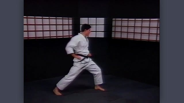 Nunchaku: Classic Fumio Demura Kobudo Video Review: Warm-Ups