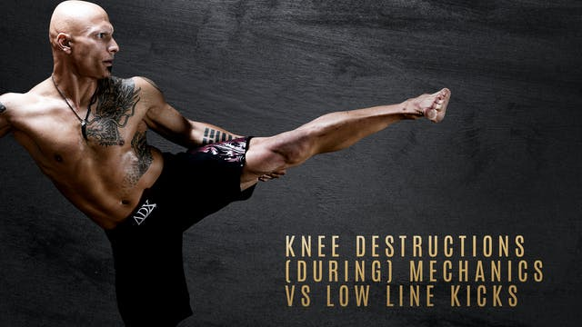 Knee Destructions (During) Mechanics ...