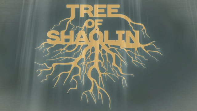 Shaolin Shou Fa: Traditional Form to ...
