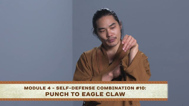 Self-Defense Combination #10: Punch to Eagle Claw