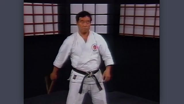 Nunchaku: Classic Fumio Demura Kobudo Video Controlled Swings