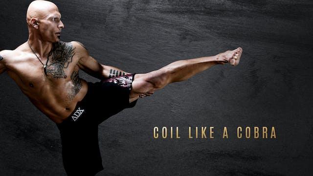 Stance- Coil Like a Cobra