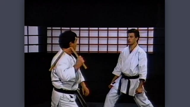 Nunchaku: Classic Fumio Demura Kobudo Video Swings (With Partner)