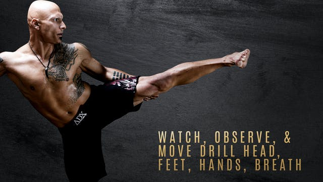 Watch, Observe, & Move Drill - Head, Feet, Hands, Breath