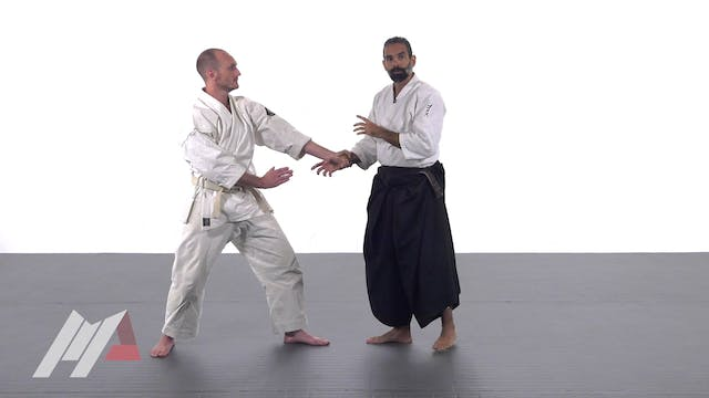Guillermo Gomez - Aikido Advanced Tai...