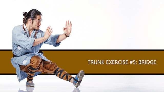 Trunk Exercise #5: Bridge