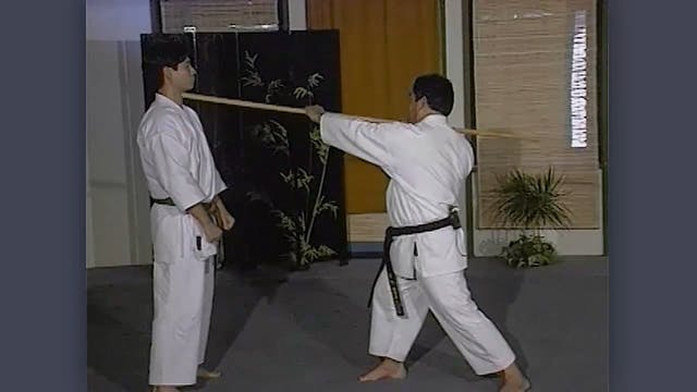 Bo: Classic Fumio Demura Kobudo Video Strikes