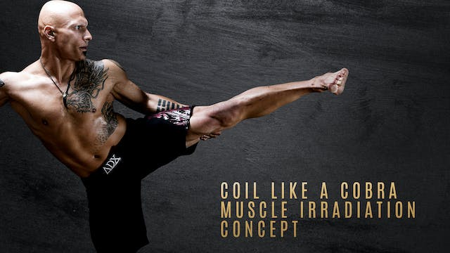 Stance- Coil Like a Cobra - Muscle Irradiation Concept