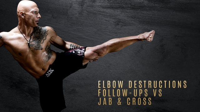 Elbow Destructions Follow-ups vs Jab & Cross