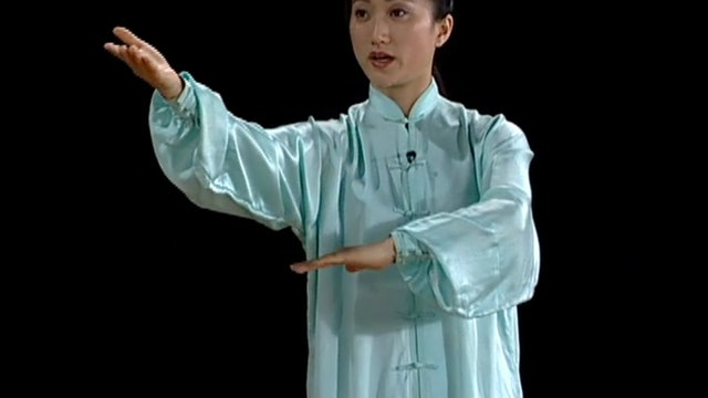 Li Jing - Yang Ten Movements and Self Defense