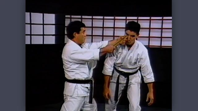 Nunchaku: Classic Fumio Demura Kobudo Video Applications