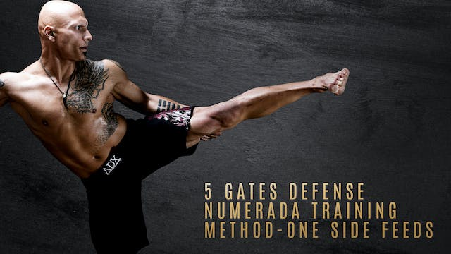 5 Gates Defense - Numerada Training Method - One Side Feeds