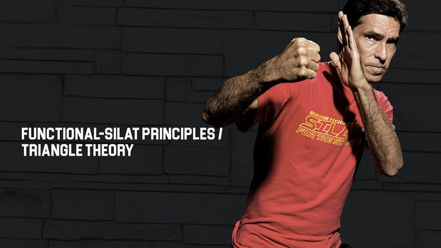 Functional-Silat Principles / Triangl...