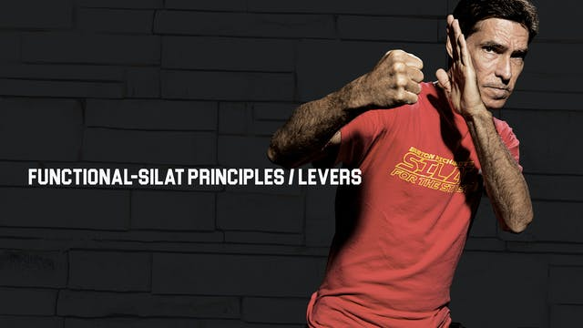 Functional-Silat Principles / Levers