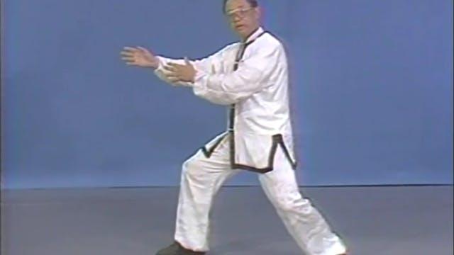 Daniel Lee - Tai Chi Fast Set