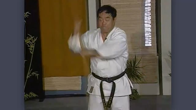 Bo: Classic Fumio Demura Kobudo Video: Blocks
