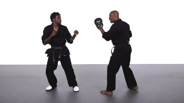 Jadi Tention - Hook Round Kick Progression Training Tips