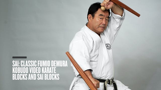 Sai: Classic Fumio Demura Kobudo Video Karate Blocks and Sai Blocks