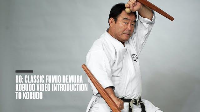 Bo: Classic Fumio Demura Kobudo Video Introduction to Kobudo