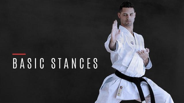 Basic Stances