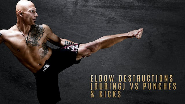 Elbow Destructions vs Punches & Kicks Long Range Destructions vs Jab & Cross