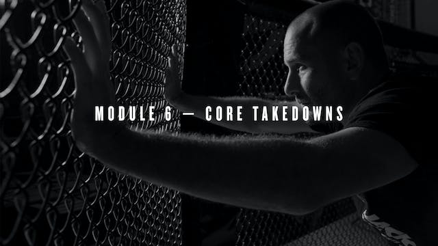 Module 6 — Core Takedowns