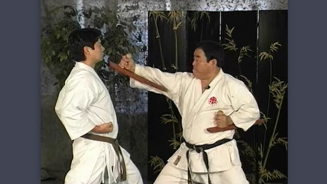 Tonfa: Classic Fumio Demura Kobudo Video Karate Strikes and Tonfa Strikes