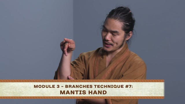 Branches Technique #7: Mantis Hand