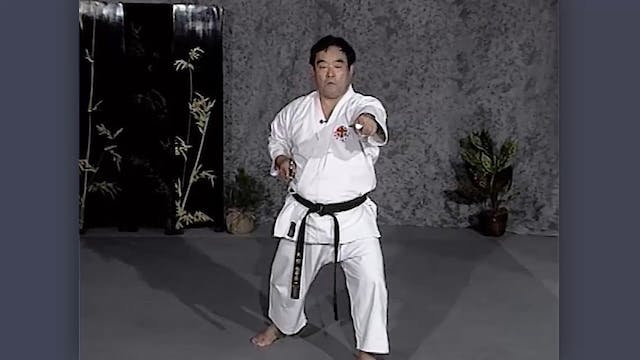 Sai: Classic Fumio Demura Kobudo Video Moving Basics
