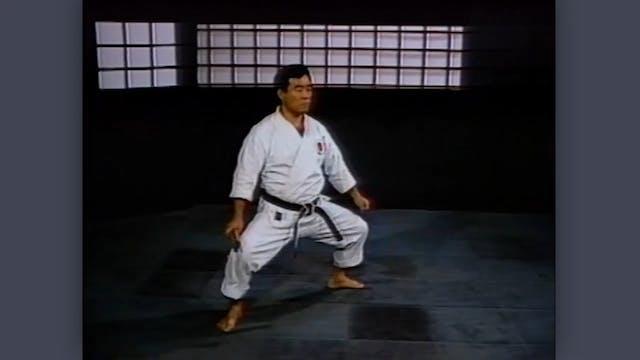 Nunchaku: Classic Fumio Demura Kobudo Video Stances