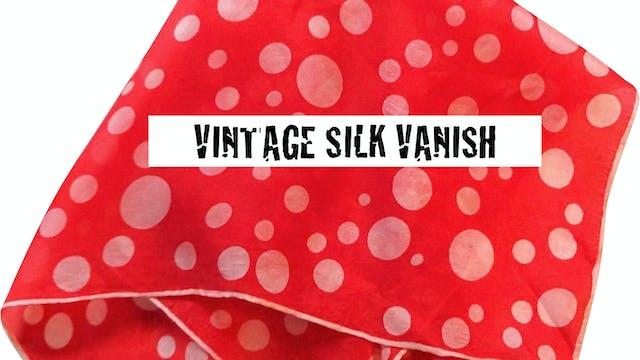 17 VINTAGE SILK VANISH