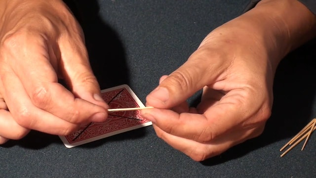 MAGNETIZED TOOTHPICK