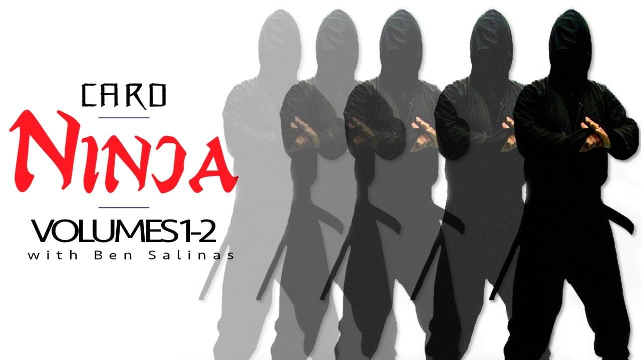 Card Ninja Volumes 1 & 2