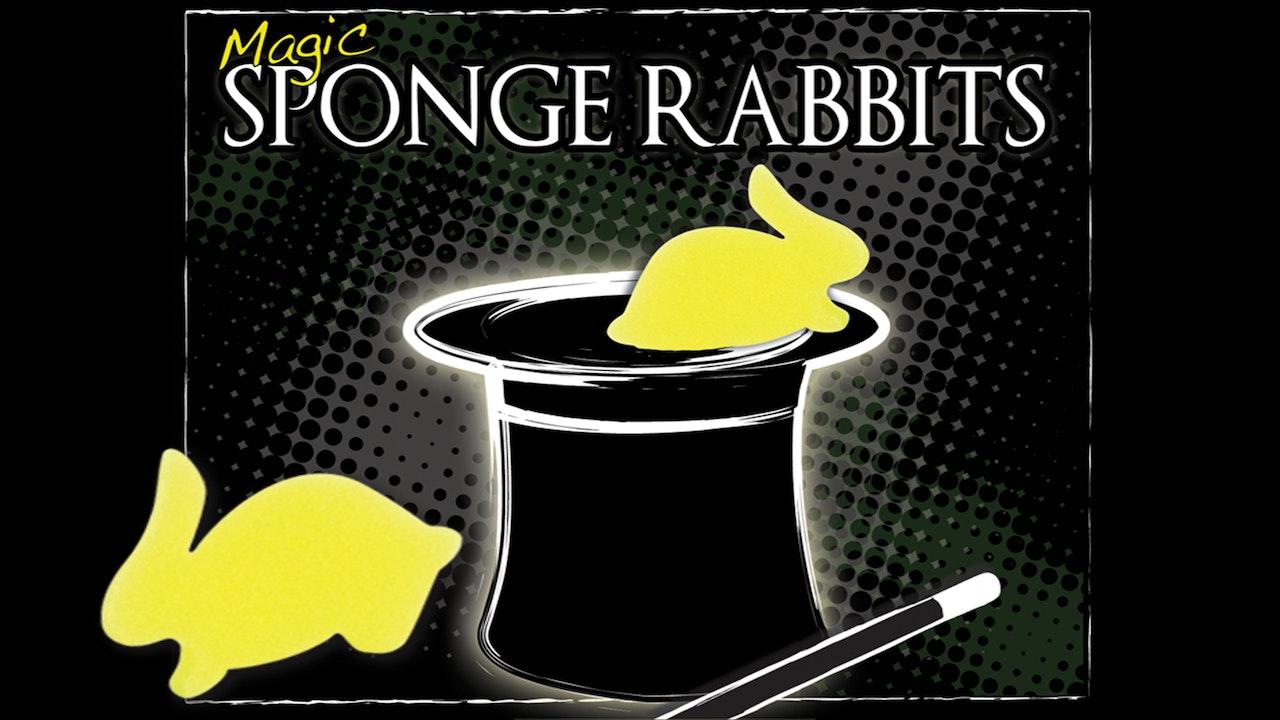 Magic Sponge Rabbits - The Complete Course on MasterMagicTricks.com
