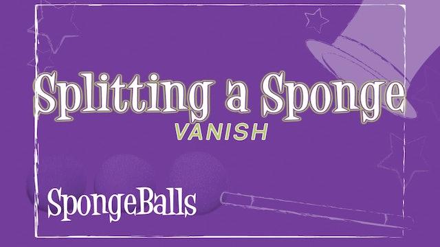 Splitting a Sponge Vanish