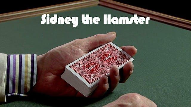 Sydney the Hamster