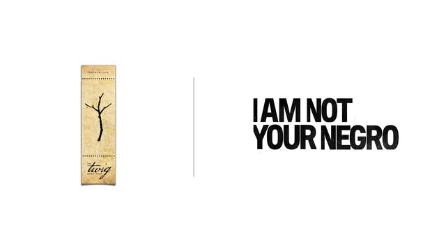 I Am Not Your Negro - The Twig Book Shop