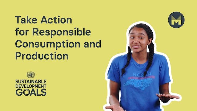 13. Take Action for Responsible Consumption and Production (Ages 11 - 17)
