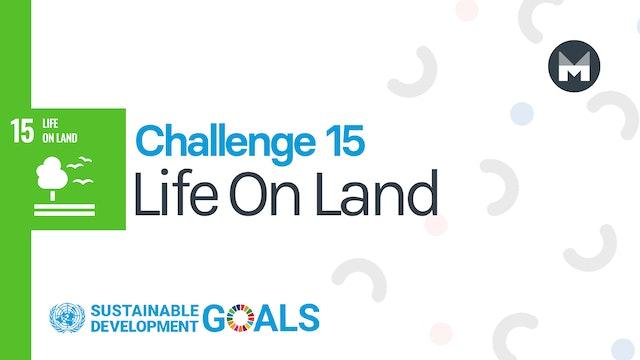 Challenge 15: Life On Land