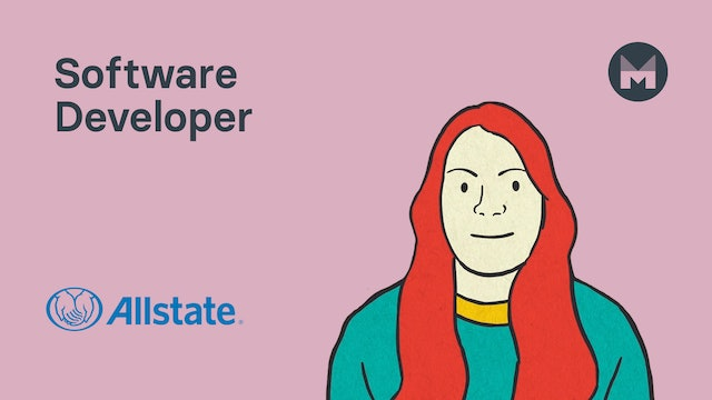 9. Software Developer