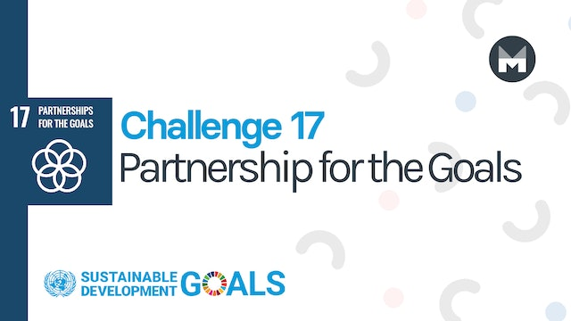 Challenge 17: Partnership for the Goals
