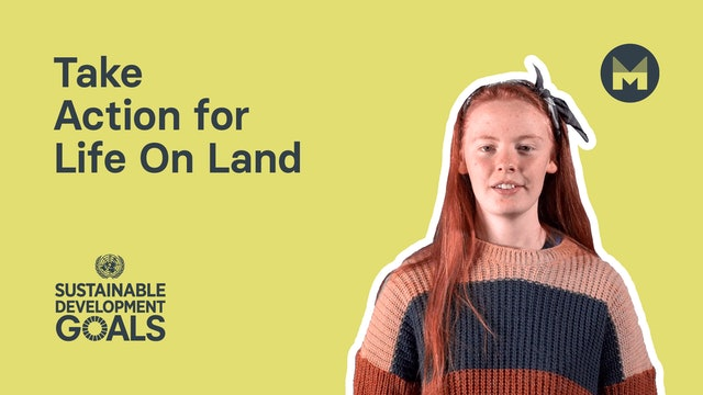 Take Action for Life On Land (Ages 11 - 17)