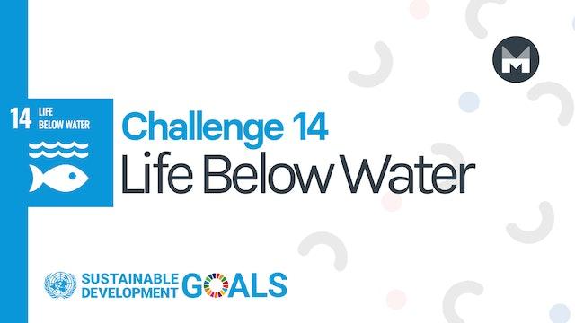 Challenge 14: Life Below Water