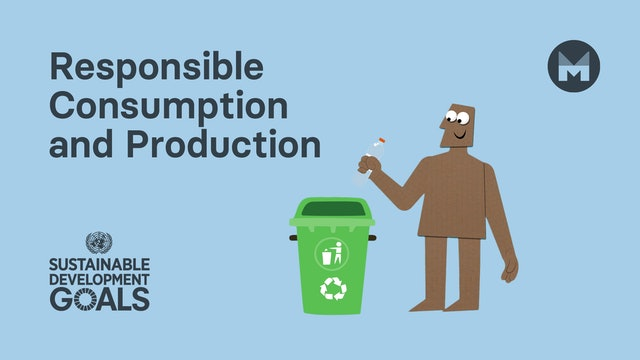 12. Global Goal 12: Responsible Consumption and Production (Ages 11 - 17)