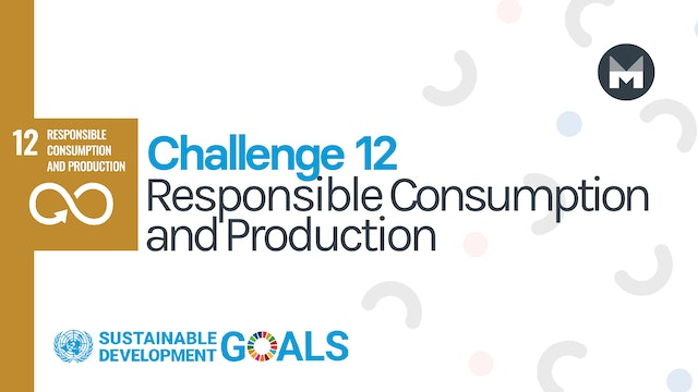 Challenge 12: Responsible Consumption and Production