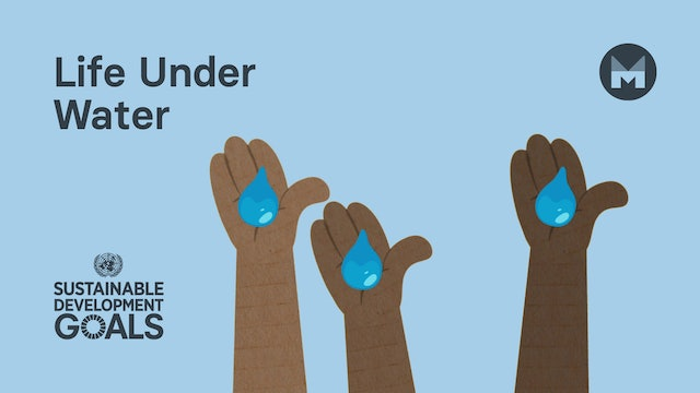 14. Global Goal 14: Life Under Water (Ages 11 - 17)