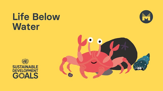 Global Goal 14: Life Below Water (Ages 5 - 11)
