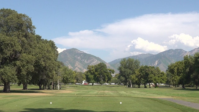 THE SECOND HOLE AT NIBLEY